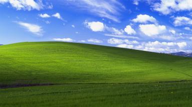 dk windows meadow